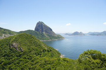 Sugarloaf Mountain Greenery and Guanabara Bay Rio