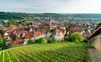 Blick auf Esslingen am Neckar