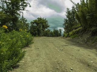 Camino de ripio entre las montañas.