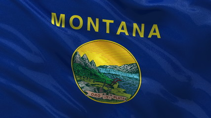 US state flag of Montana waving in the wind - seamless loop