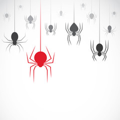 Vector image of an spider on white background