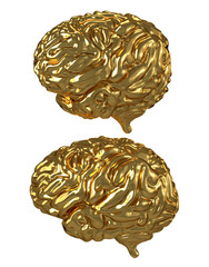 Golden Brain isolated on white