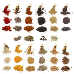 Collection of spices and seeds on white background
