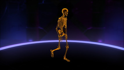Xray walking skeleton Loop