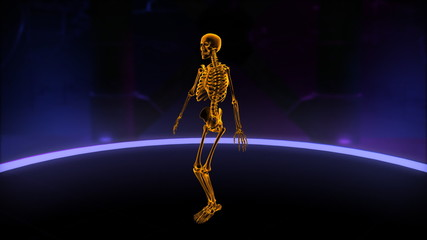 Xray skeleton doing Jumping Jacks Loop