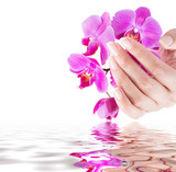 Fototapety manicure and beauty background