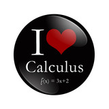 I Love Calculus button poster