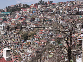 A densely populated Shimla hillside, Northern India