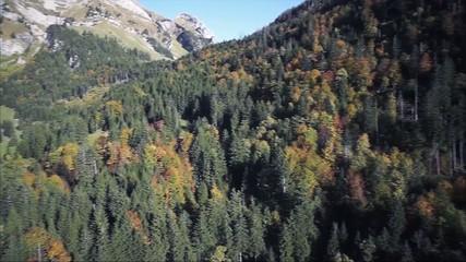 Toggenburg Luftaufnahme Alp, Berge, Wald