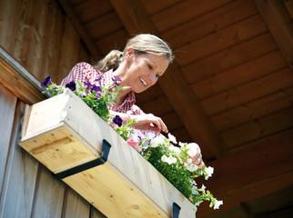 Frau auf Balkon pflegt Petunien im Blumenkasten