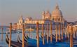 Venice - Santa Maria della Salute church and gondolas