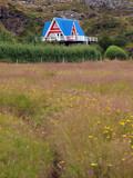 Haus in Landschaft auf der Halbinsel Snaefellsnes, Island poster