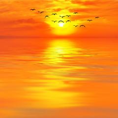 cuando el mar se tiñe de oro