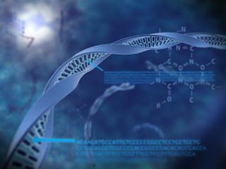 ADN avec codage