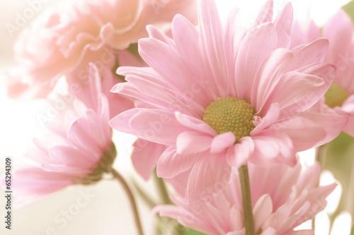 Soft tone floral bouquet Poster