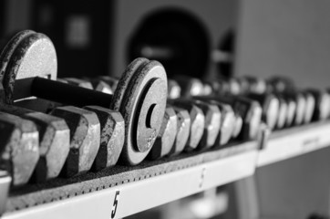 Dumbbells on a rack