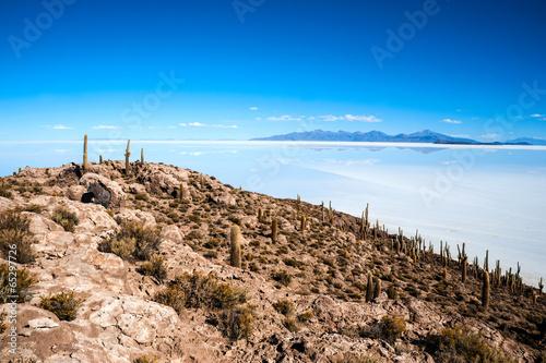 Salt lake - Salar de Uyuni in Bolivia - 65297726