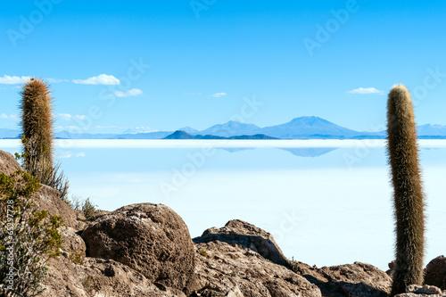 Salt lake - Salar de Uyuni in Bolivia - 65297728