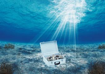 Dinheiro em alto mar