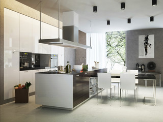 Kitchen contemporary style