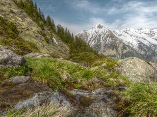 frisches Quellwasser in den Alpen in HDR