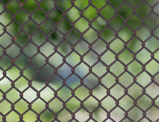 Fence of grid Rabitz against the greens