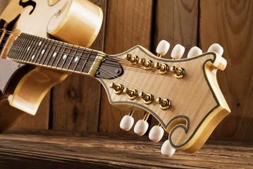 mandolin peghead