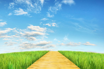 Bright summer landscape with wooden road going into the distance
