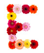 A flower letter on white background