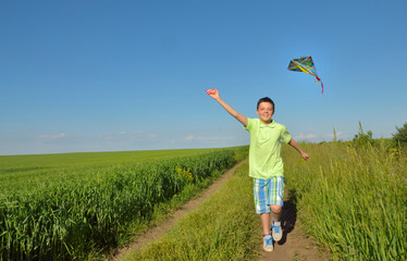 boy playing with kite on greenfield
