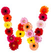 A flower letter on white background