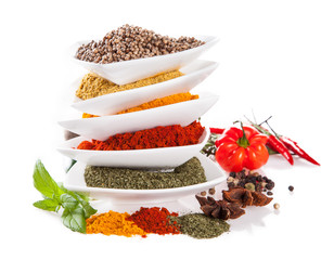 Various kind of spices isolated on white