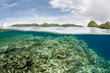 Coral Reef and Lagoon