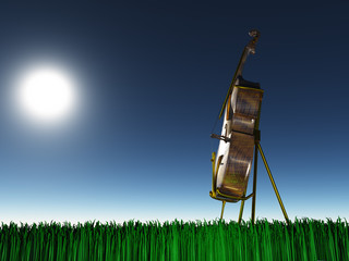 Cello on grass
