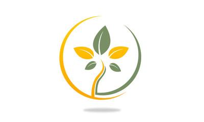 Ecology plant in circle logo