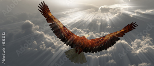 Fotobehang Vogel Eagle in flight above the clouds