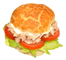 Fresh Tuna Fish Sandwich Roll