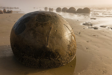 Moeraki boulders in early morning mist