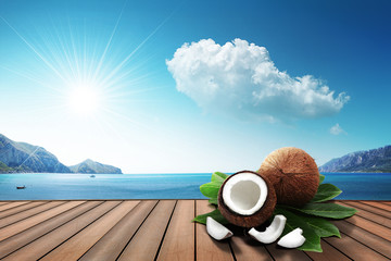coconut on the harbor