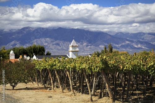 Aluminium Zuid-Amerika land Vineyards in Cafayate, Argentina