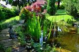 Garten Teich Buddha - 65353502