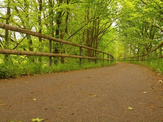A closeup view to run road in park. The asphalt way in park