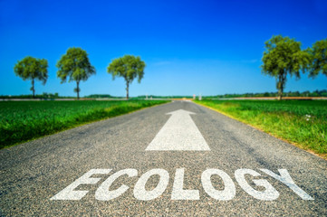 Ecology word painted on asphalt road