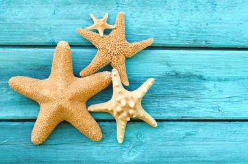 Морские звезды на деревянной палубе