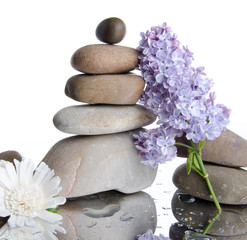 Composition of stacked pebbles with lilac