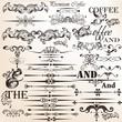 Set of vector vintage decorative elements for design
