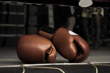Boxing Glove Vintage