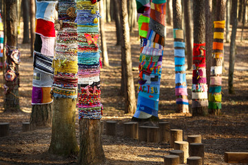 Knitted trees in the park