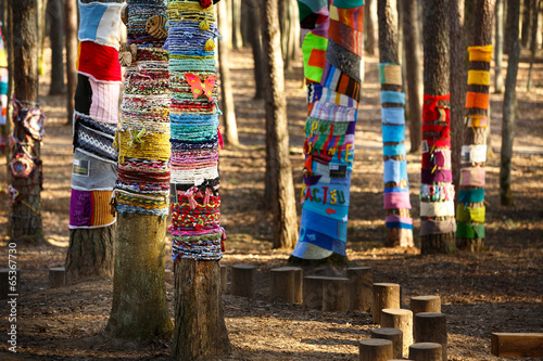 Leinwandbild Motiv Knitted trees in the park