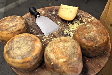 Pecorino cheese on wooden table.